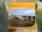 Musette champetre